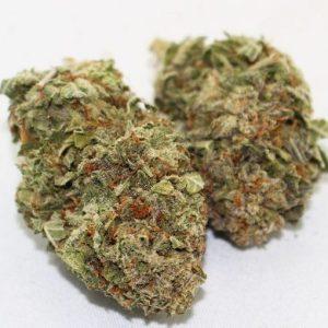 Buy-Cracker-Jack-Marijuana-Strain