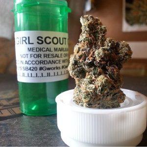 Buy Girls Scout Cookies Marijuana