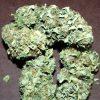 Buy LSD Cannabis Strain
