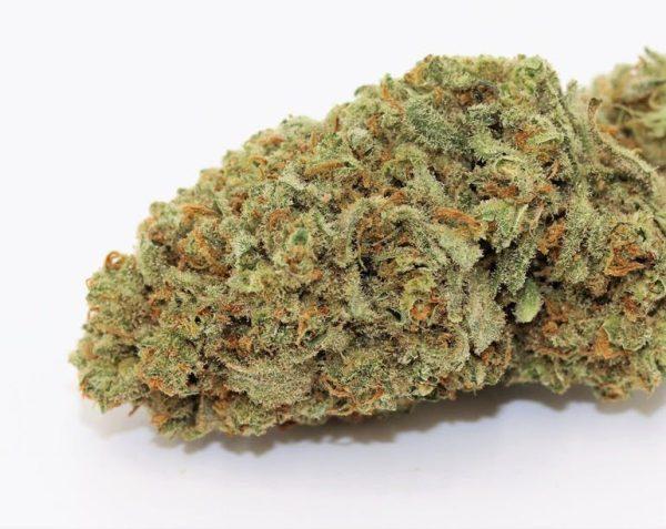 Cinderella 99 Cannabis Strain