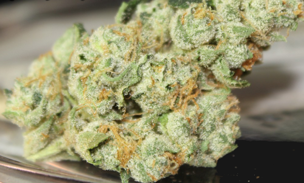 Buy AK Banana Strain Marijuana