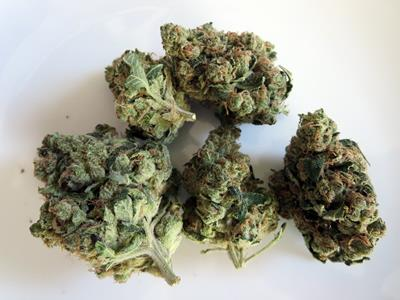 Buy Sour Diesel, sour d weed