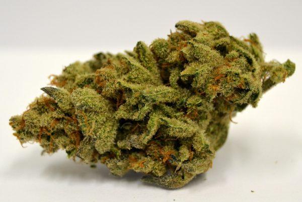 chernobyl_marijuana_strain_grande