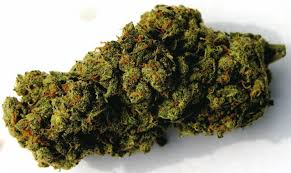 Jack Herer, Marijuana Strains