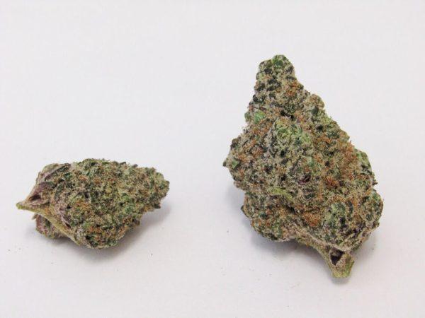 LSD Cannabis Strain