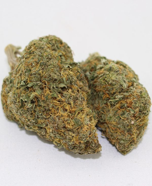 UK CHEESE MARIJUANA ONLINE, blue cheese marijuana