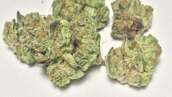 Buy Snow White marijuana online, White Cookies Strain
