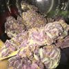 granddaddy purple, granddaddy purple indica, grand-daddy-purple-feminized-buds1