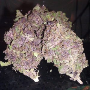 purple-kush, Buy Purple Kush Weed