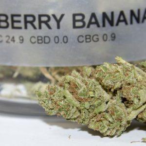 Strawberry Banana Cannabis Strain