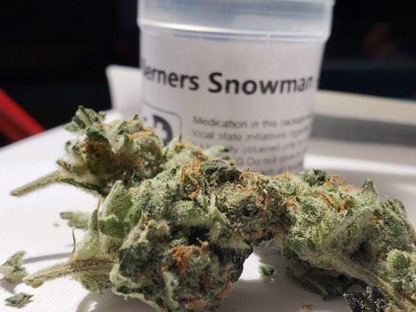 snowman cookies strain