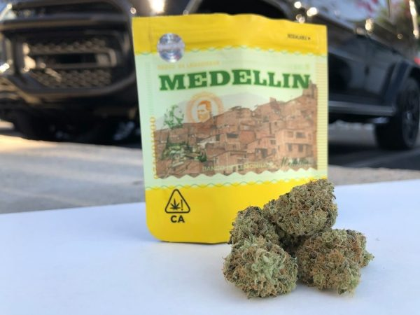 medellin cookies strain